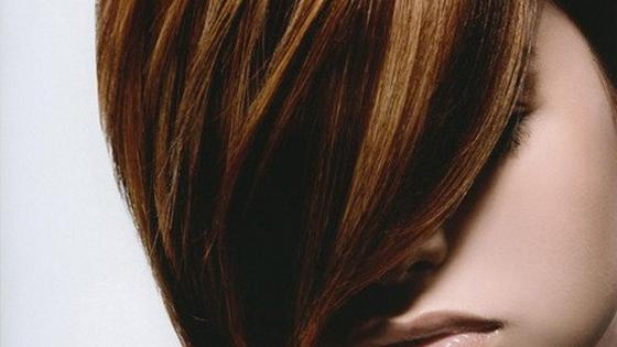 Hair Lowlights - Studio Bhumi